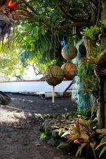 Jardins de Teahupoo, Tahiti